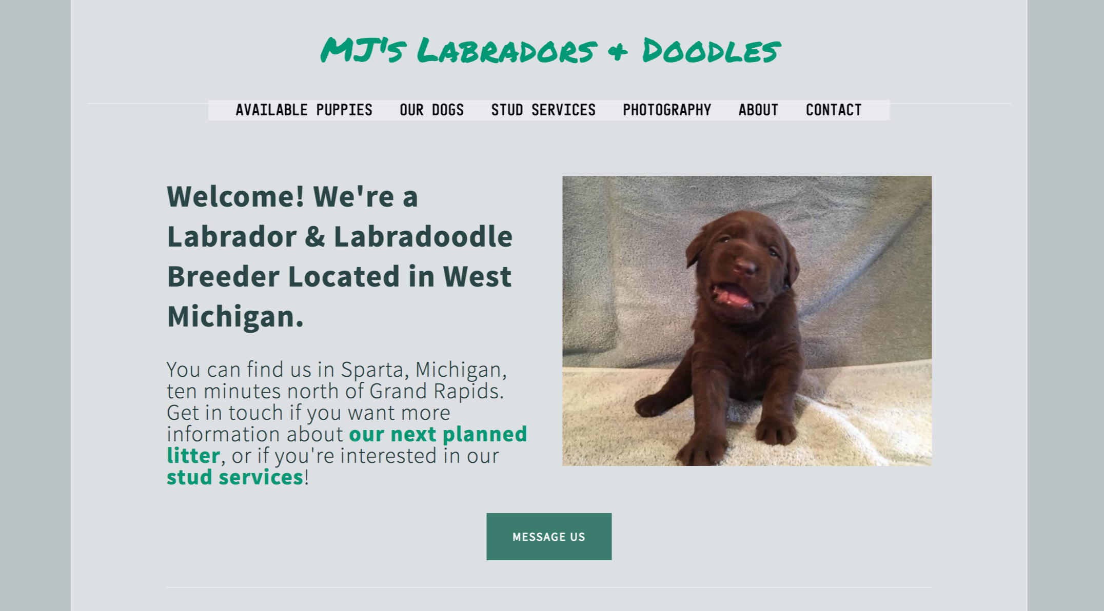 MJs-Labs.png