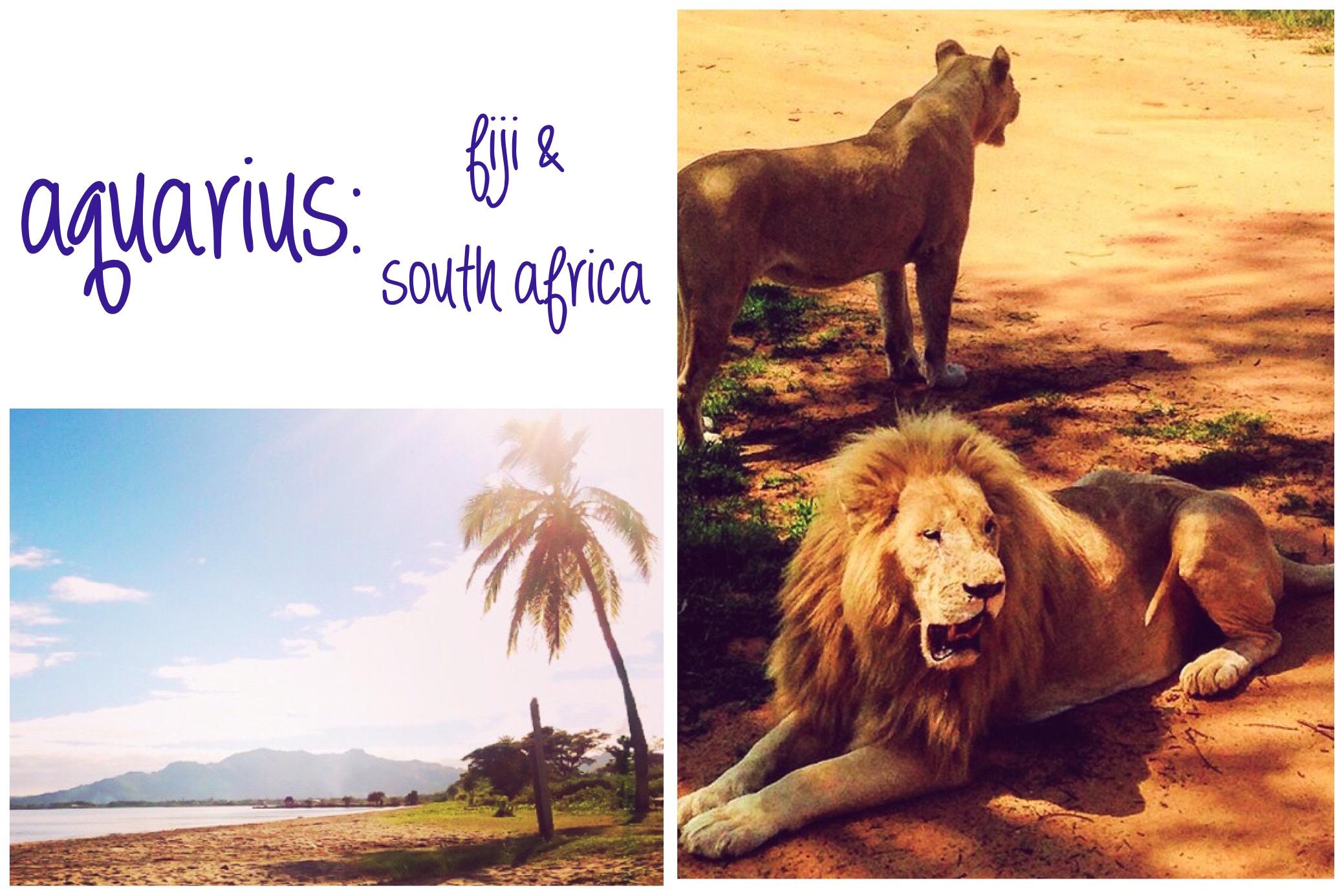photo credit, fiji: instagram.com/jess_ismore/ // photo credit, south africa:  instagram.com/thewildwildzest