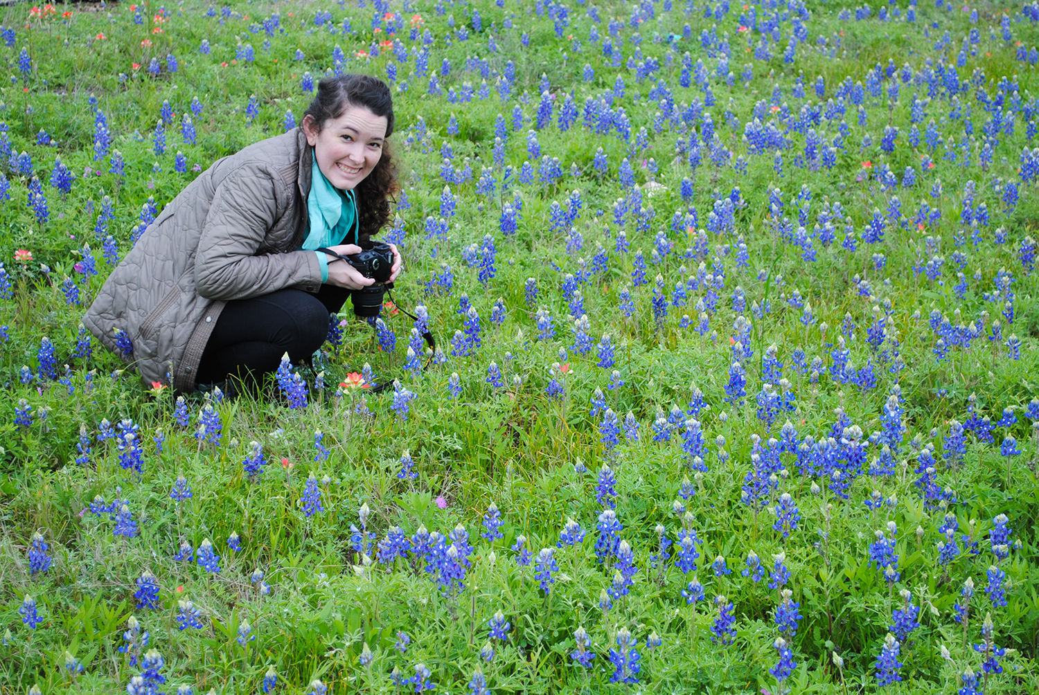 Karen photographing bluebonnets for later drawings.
