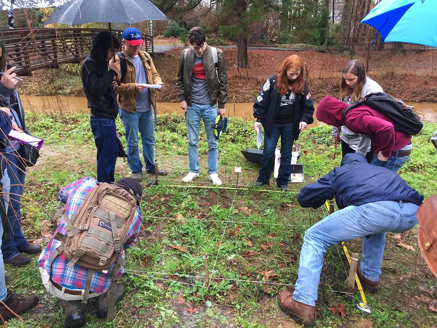SFA students in Herbaceous Plants learning how plants grow in nature. Exciting times!!!