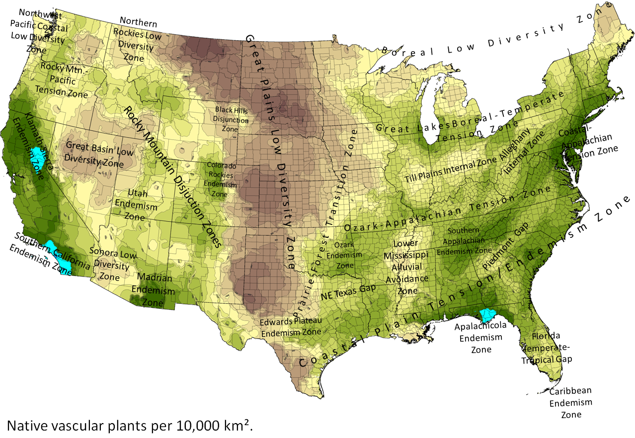 All credit to  Biota of North America Program  for generating this informative map.  While a legend doesn't exist for the map, green has the highest number of plant species followed by lighter greens and yellow, followed by tans and browns for lowest diversity of native vascular plants.  There is more information on the website about the terminology in the map.