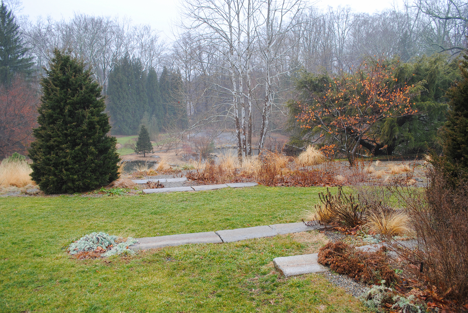 A glance towards the pond.  Nary a weed to be seen.