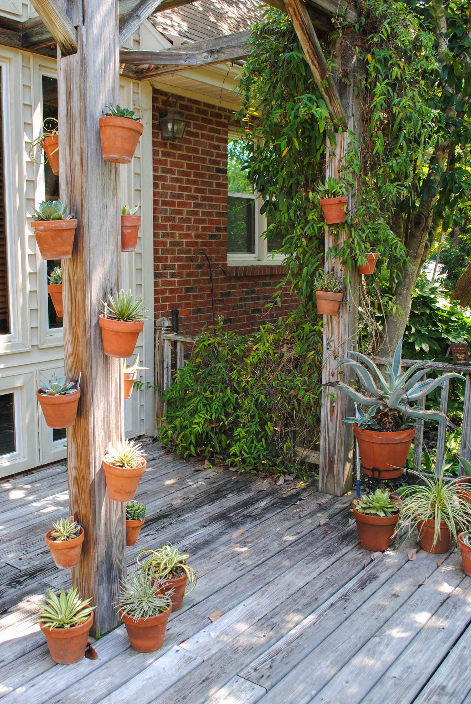 Terra cotta pots hang from posts at Juniper Level Botanic Garden.