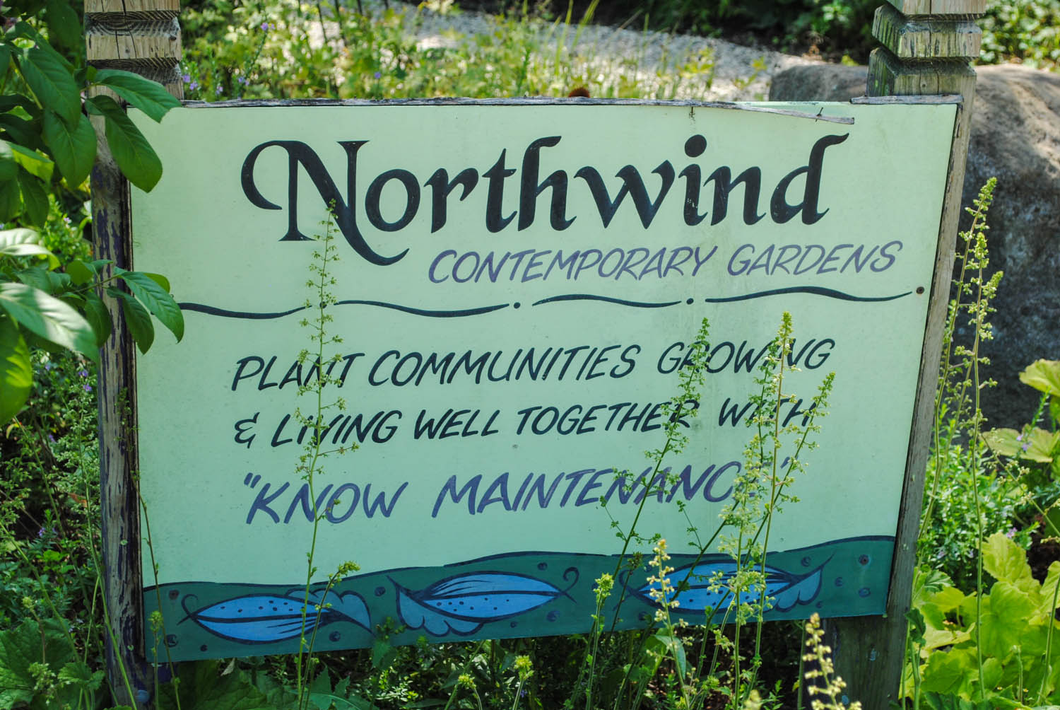 "The truth of ""know maintenance"" instead of the fallacy of ""no maintenance"", a belief imbued in the plantings at Northwind."