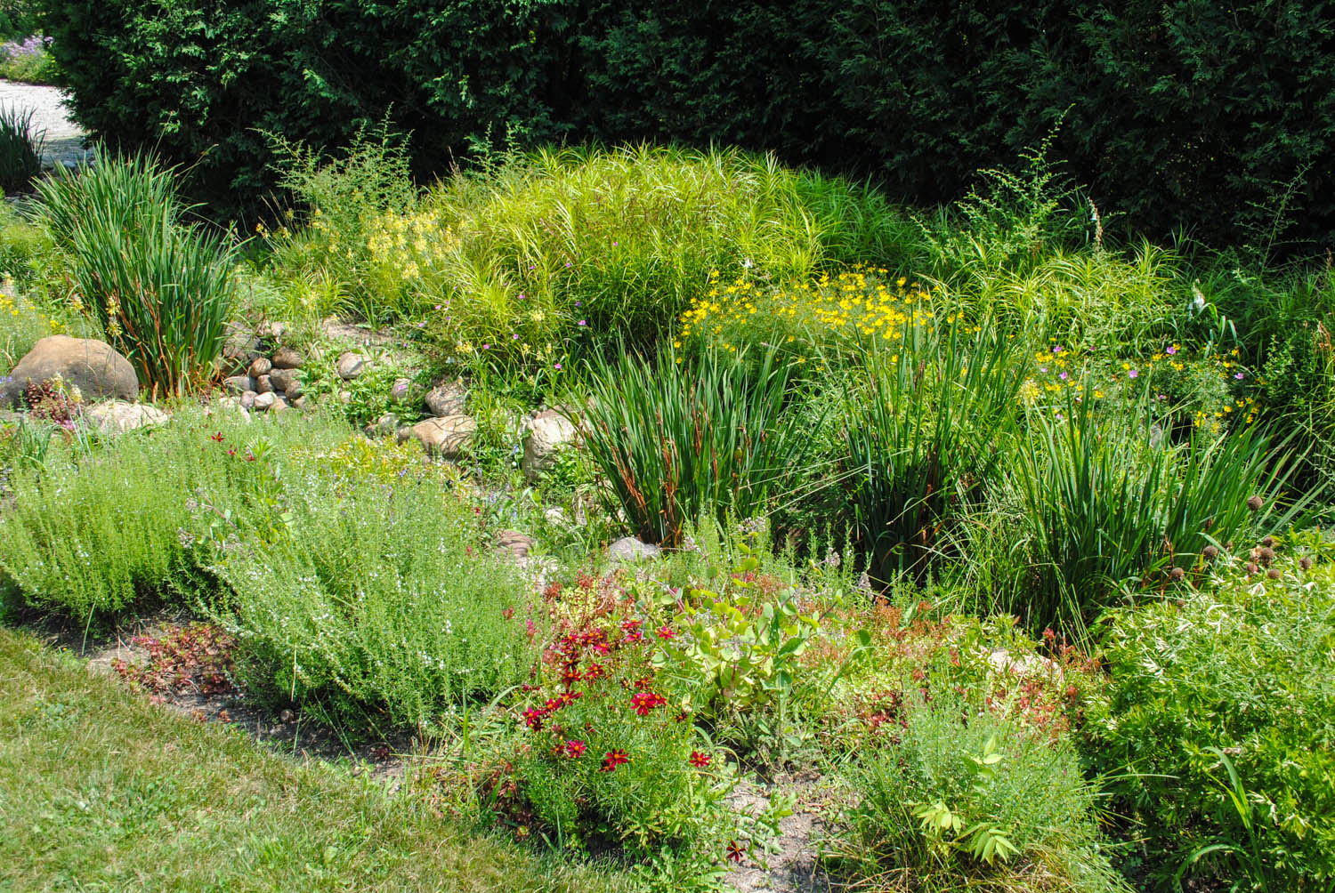 This part of the garden featured a dry creek bed.