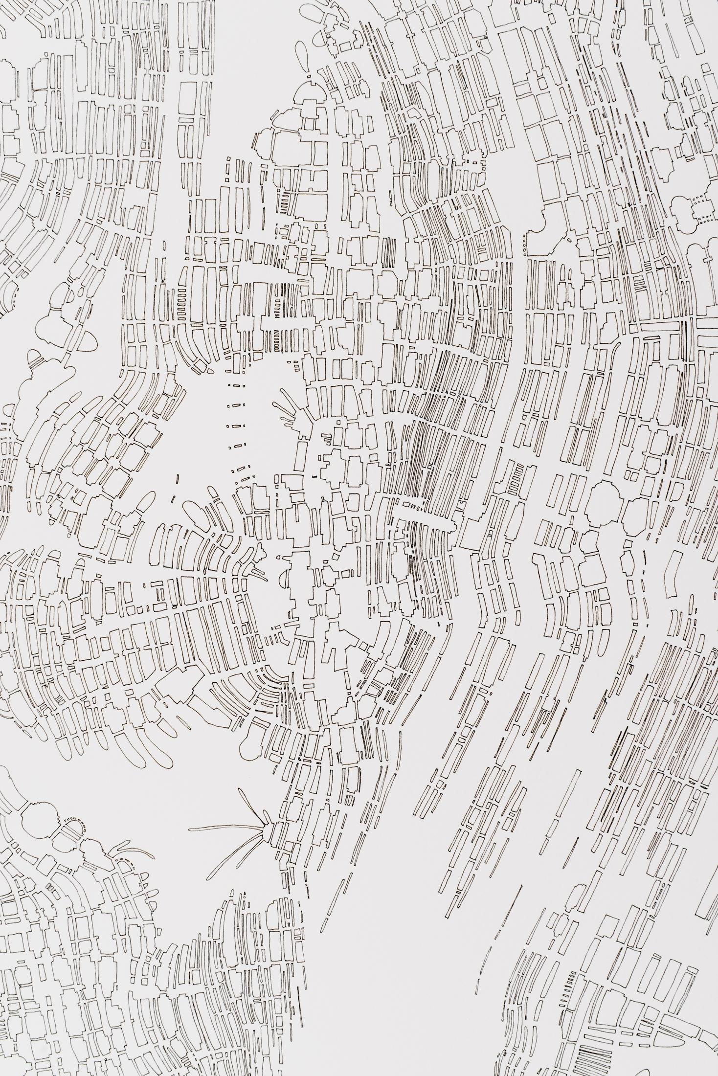 Mycelia (Detail)
