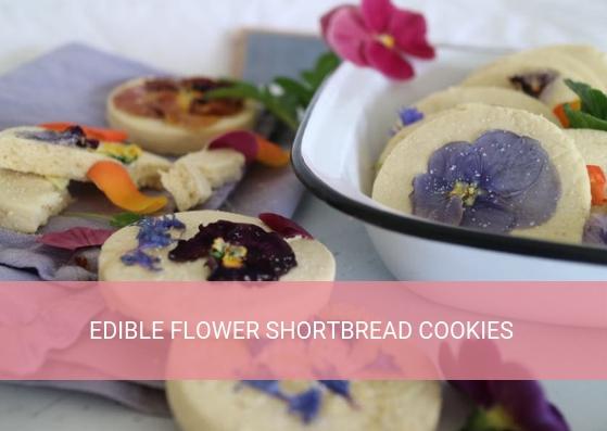 Peppermint Kitchen Edible flower shortbread cookies