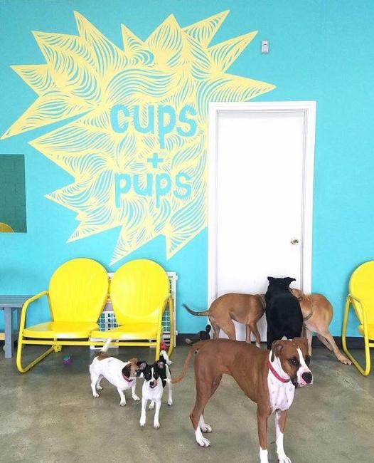 dogcafe1page.jpg