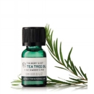 tea-tree-oil-1052104-10ml-1-640x640.jpg