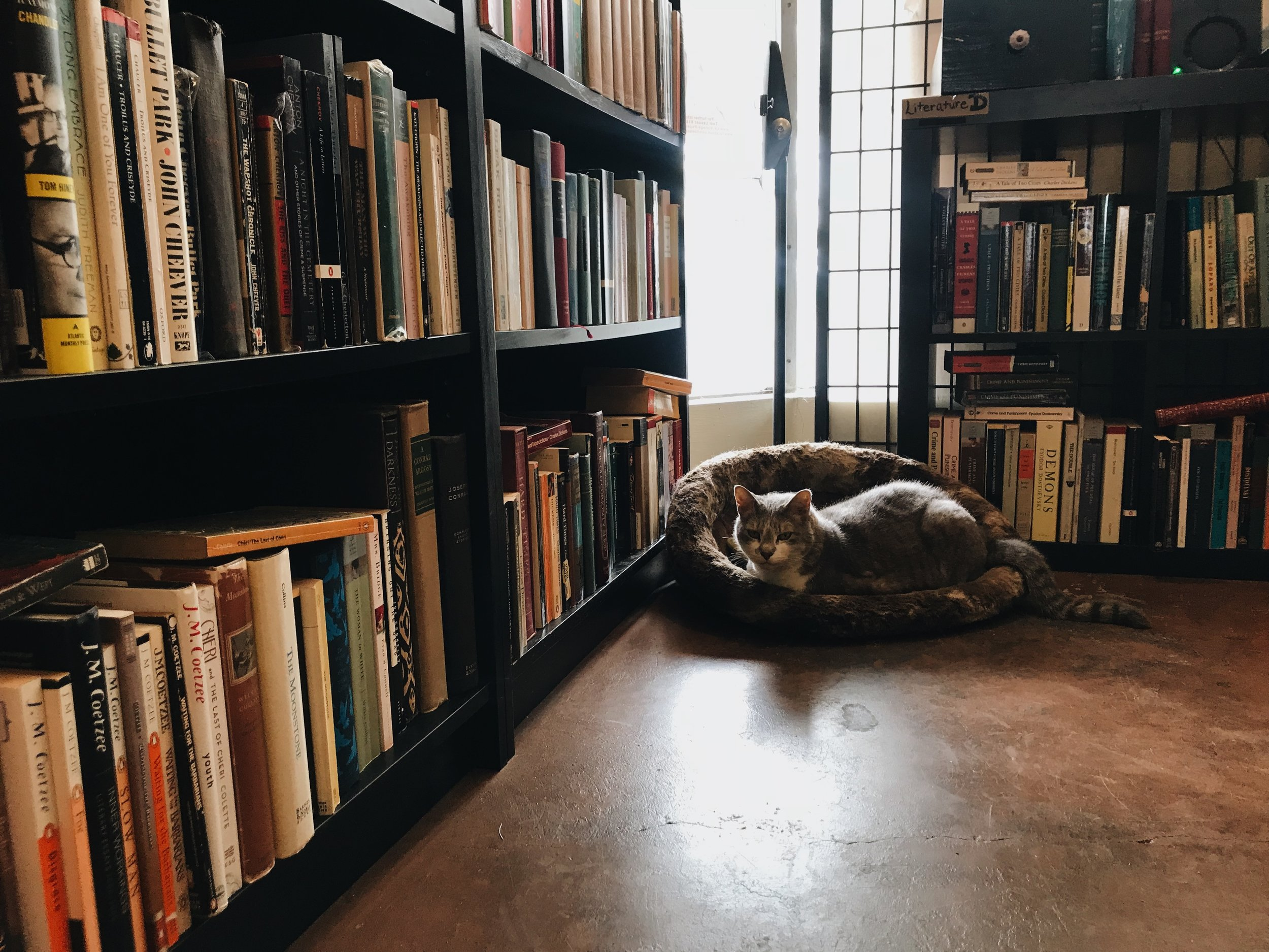 """- """" …a town without a bookstore is a town without a heart and soul."""""""