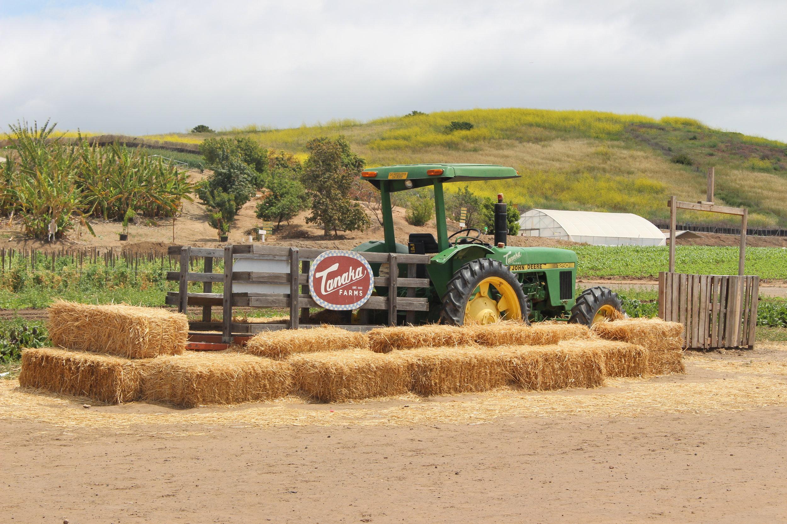 Tour guides will discuss the farm's responsible farming methods.