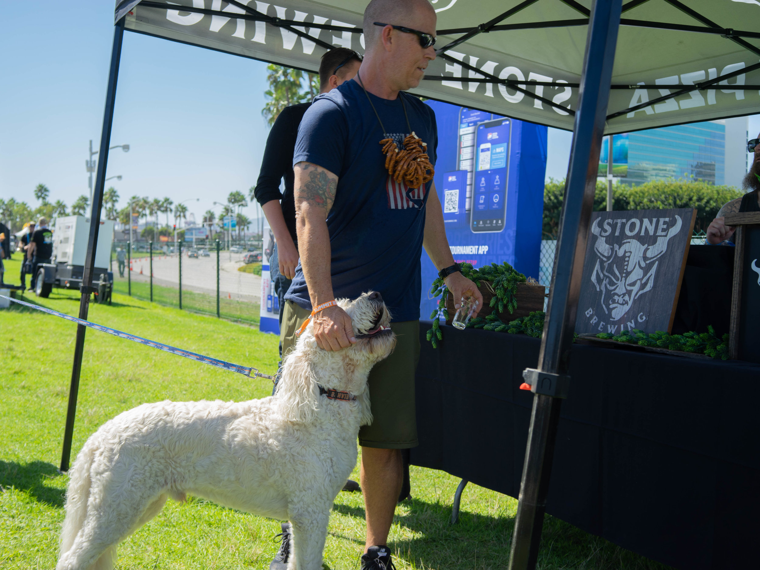 The festival was dog friendly, and the dogs present were very friendly, indeed.