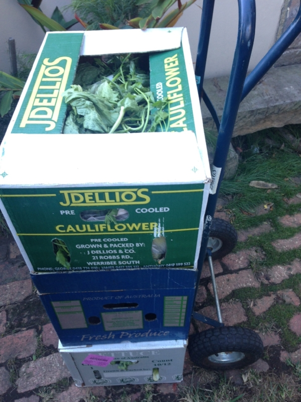 •  Three boxes of food waste to be trolleyed to the Erskineville community garden