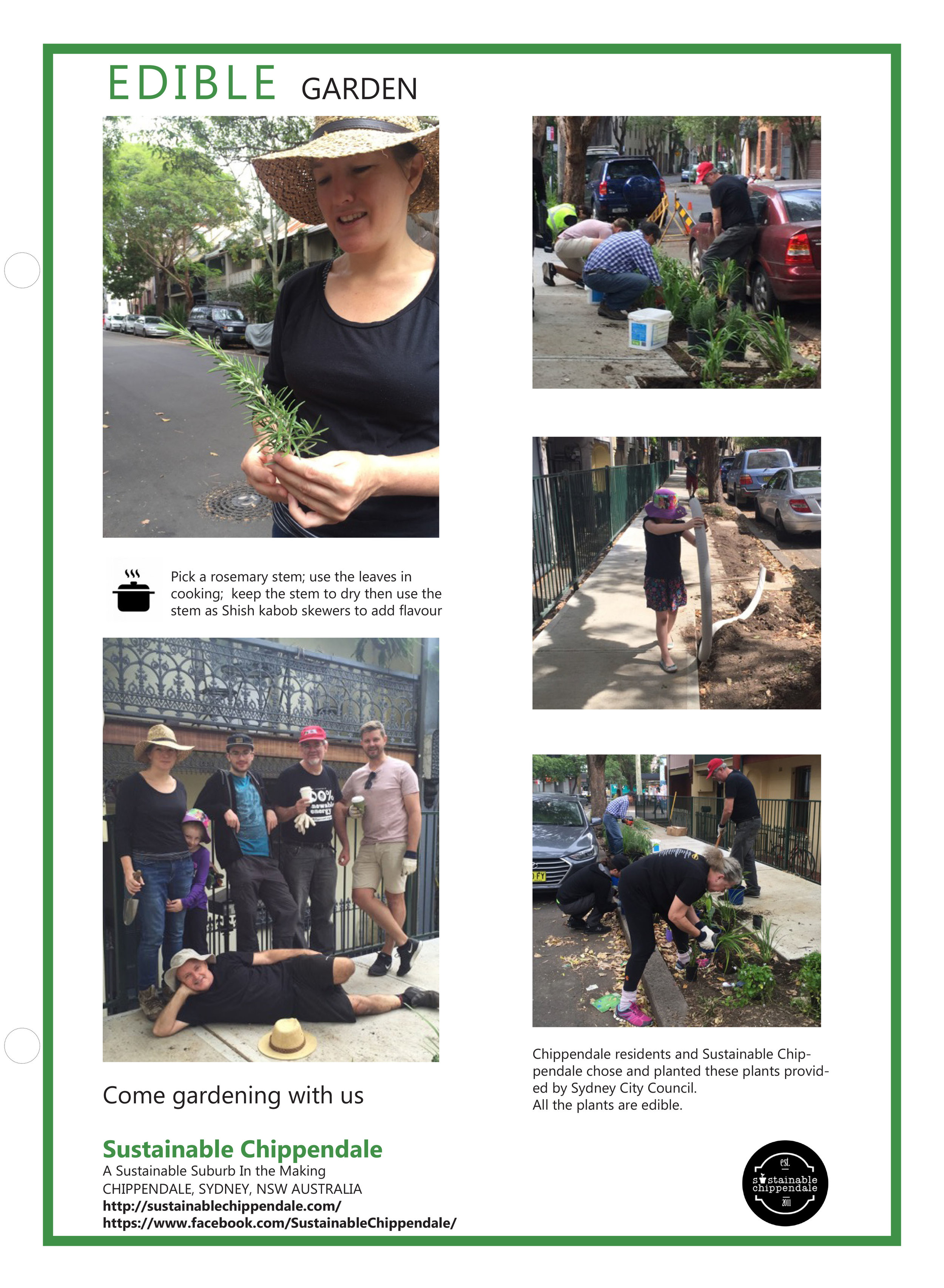 •   In Shepherd Street, Chippendale, NSW, we locals with Sydney City Council designed, built and planted road gardens and made them self-irrigating.