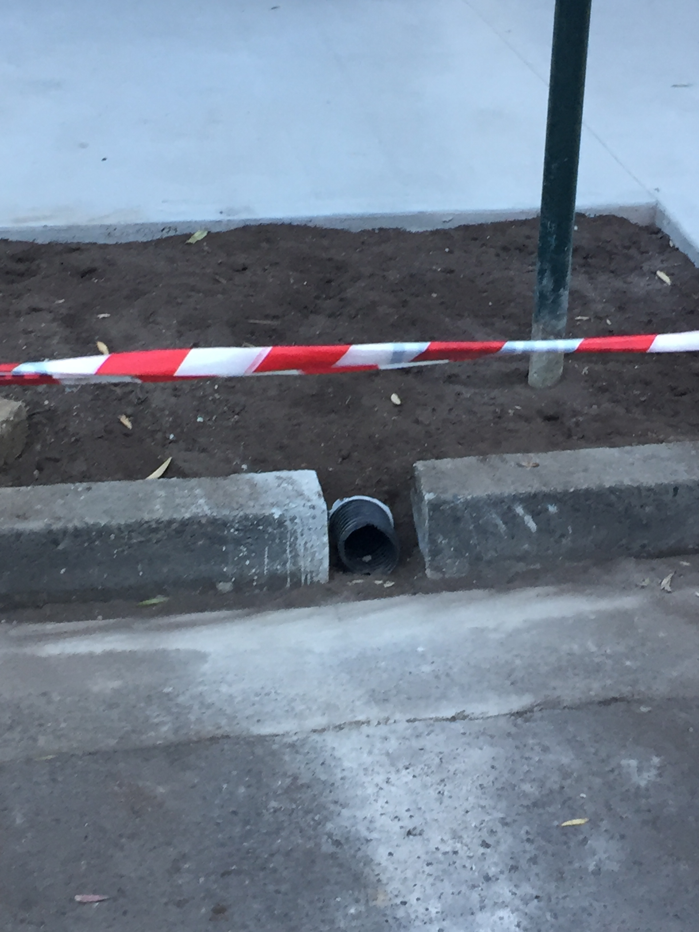 • Sydney City Council is installing leaky drains this week in Pine Street, Chippendale - see the leaky pipe in the photo? Later today concrete will put placed over the top of the pipe to keep the garden soil there.