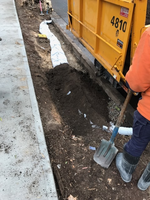 • Soil being placed over the leaky pipe. Good work being done quietly out of sight and producing healthy, well-irrigated plants and trees.