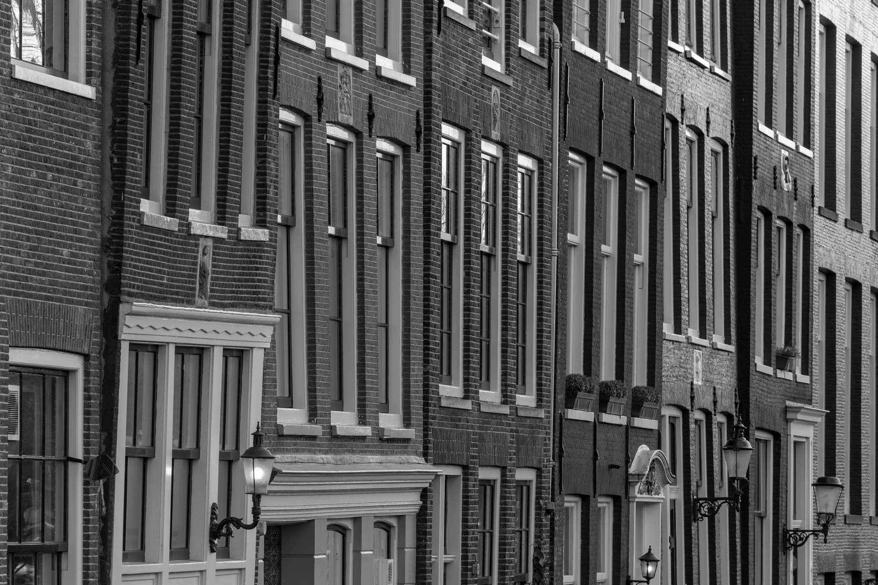 Schots en scheef, Amsterdam