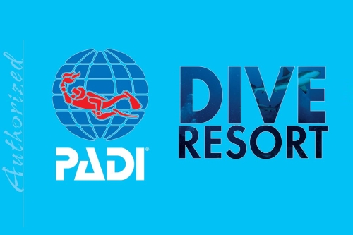 PADI - PADI is the largest recreational diving and training organisation.As a PADI Dive Resort we are able to offer both SCUBA diving and Accommodation. But at Beachfront we also have a Restaurant and Bar where you'll find a friendly crowd to share your dive experiences with.