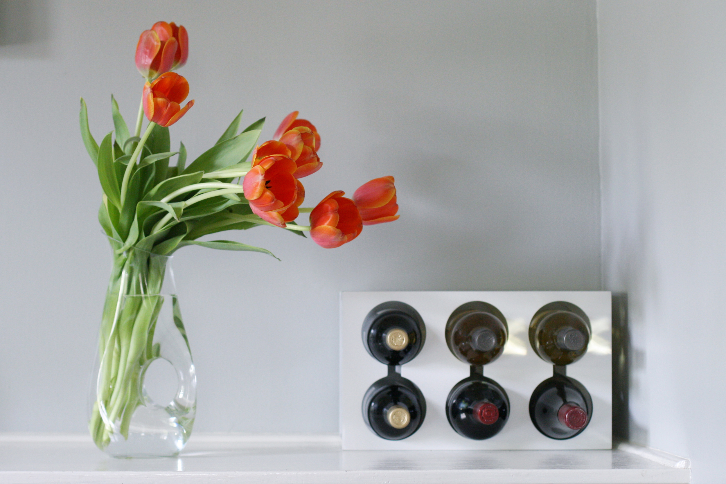 orange-tulips-1
