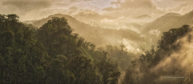 DGP Costa Rica panos-327.jpg