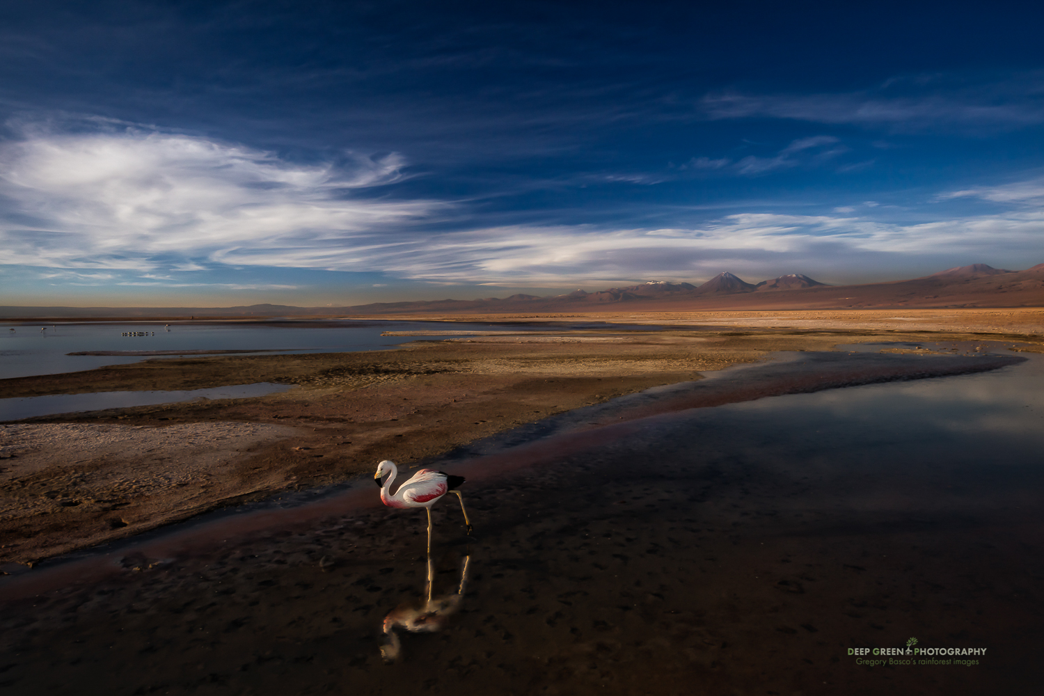 DGPprints-Beauty of the Altiplano.jpg