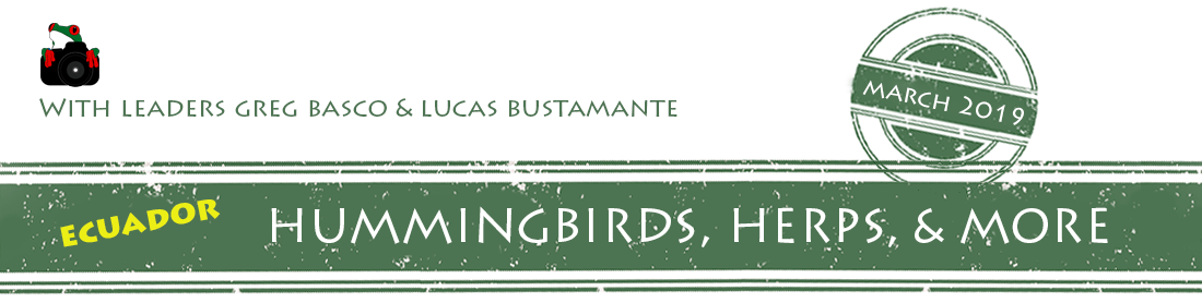 ecuador-2019-H-and-H-workshop-banner.png
