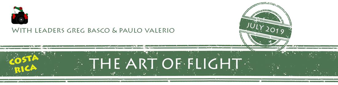 the-art-of-flight-2019-banner.png