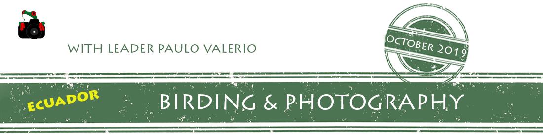 ecuador-birding-photo-2019-workshop-banner.png