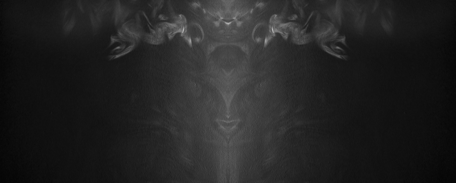 Untitled, 2015, archival pigment print, 86x214 cm cm