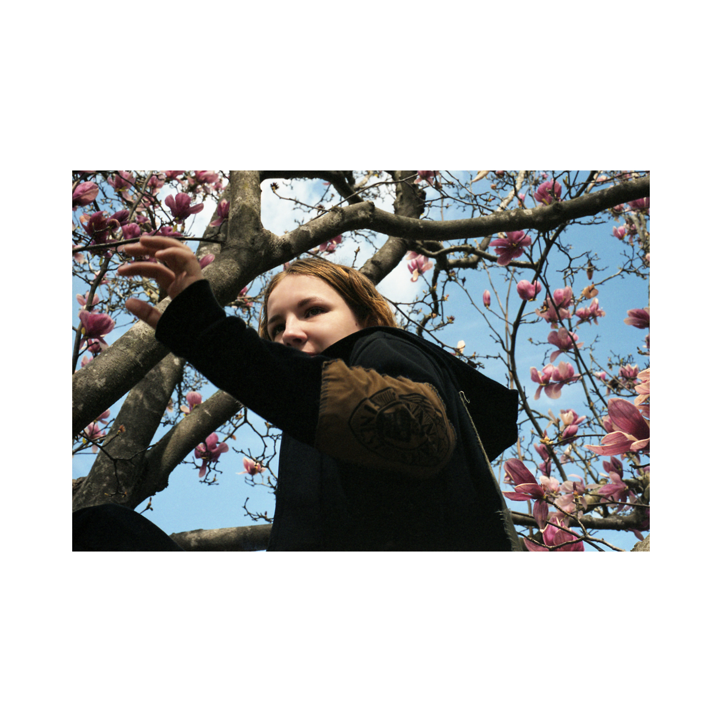 Tyler in the Japanese Magnolia