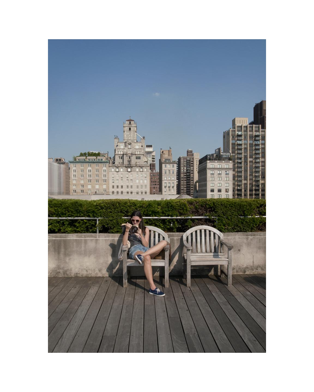 Metropolitan Rooftop Reader