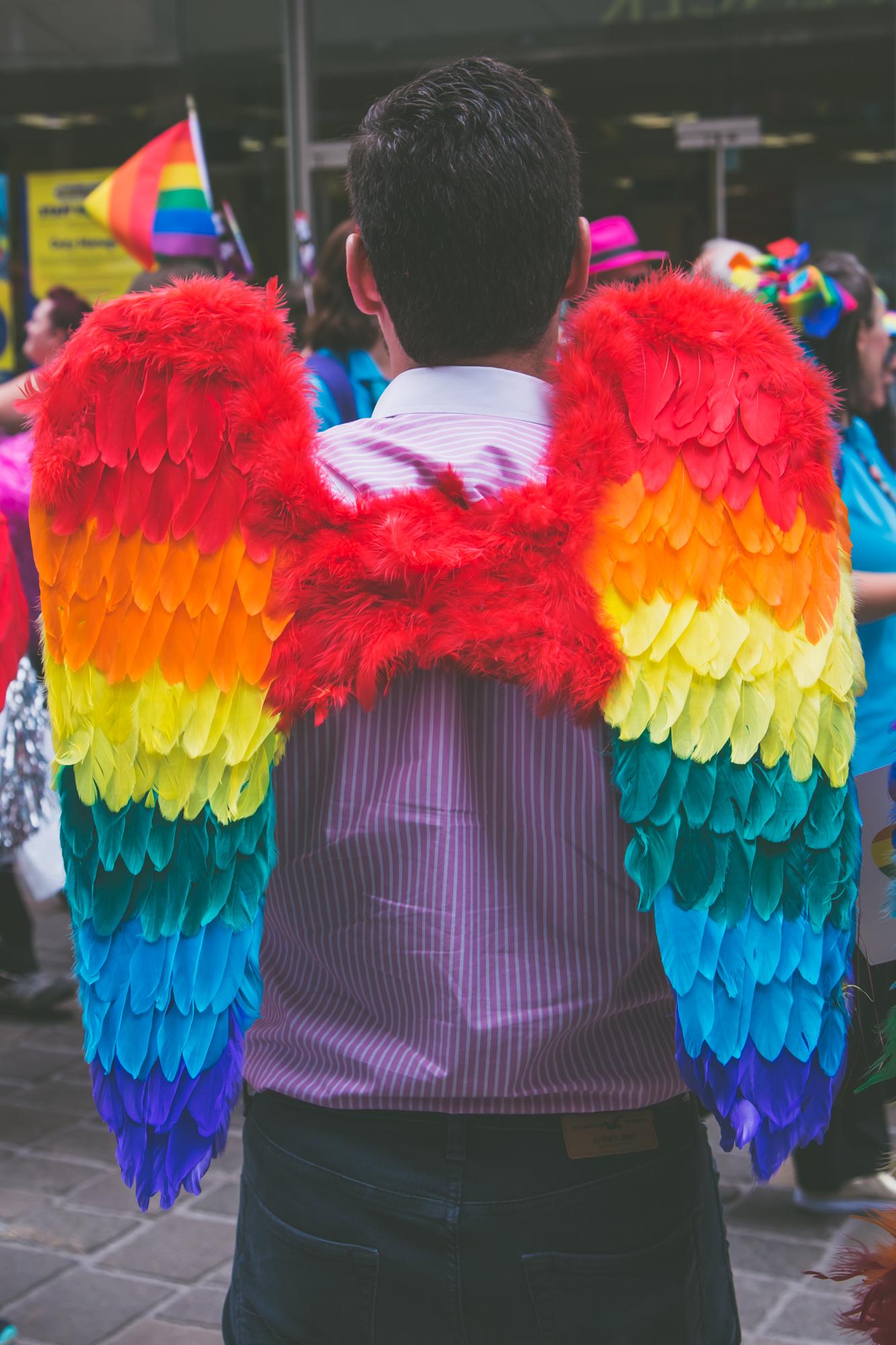 Pride wings