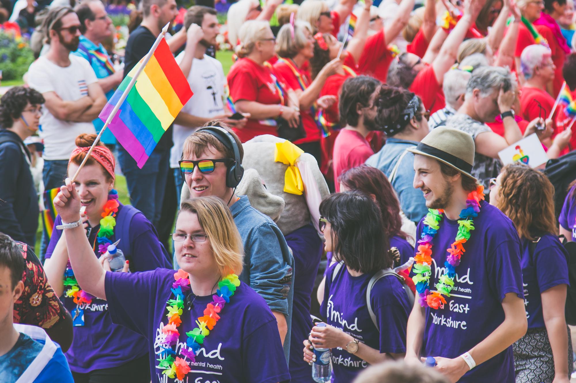 Purple pride flag wavers