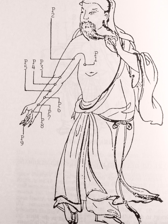 tcm-praxis-gioconda-baenziger-zurich-meridiane-2.jpg