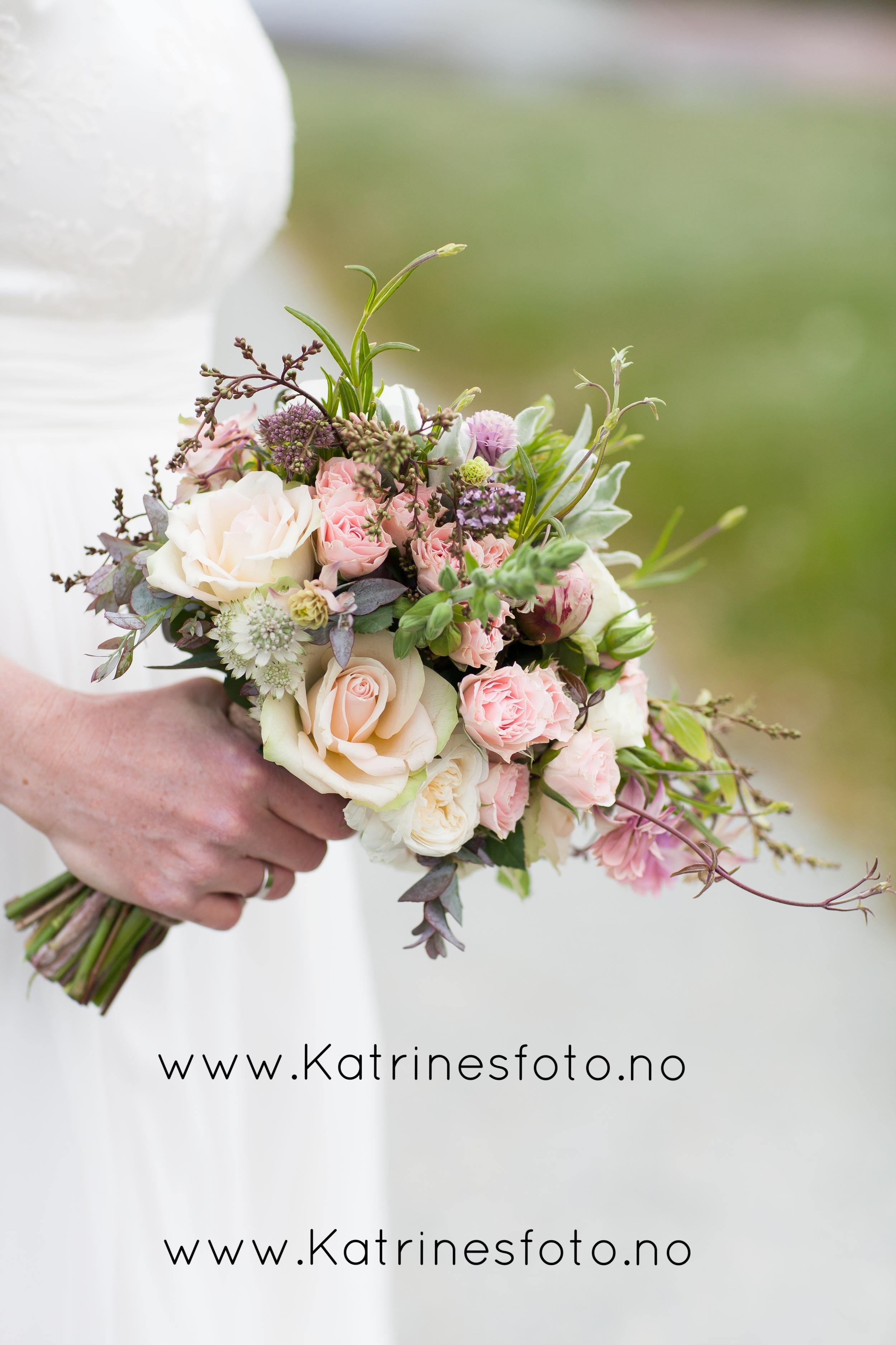 www.katrinesfoto.no