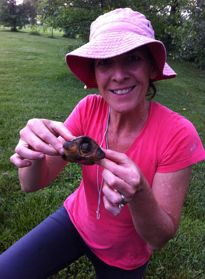 Sheila Voss Turtle.jpg