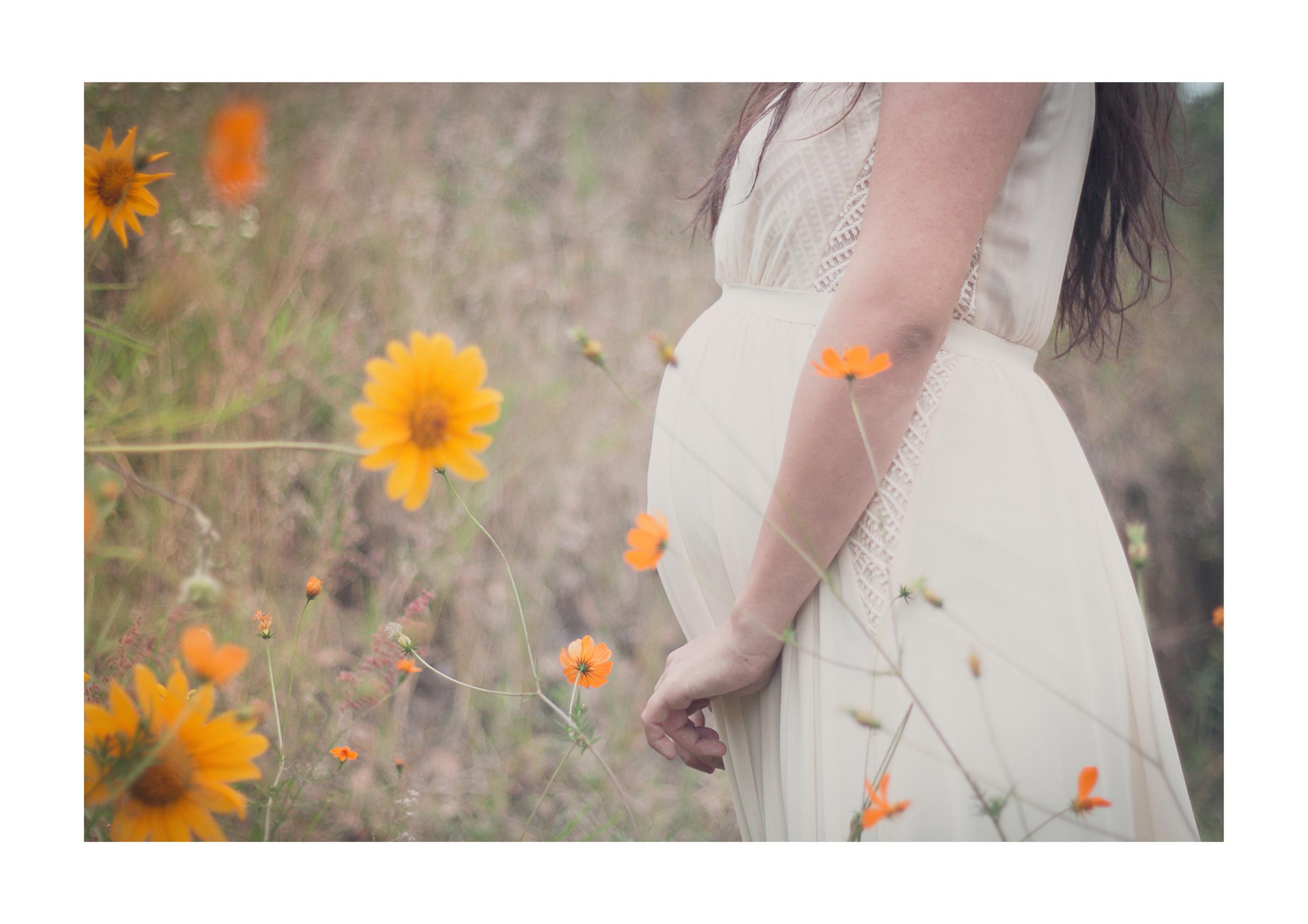 Paloma   embarazada-15.jpg