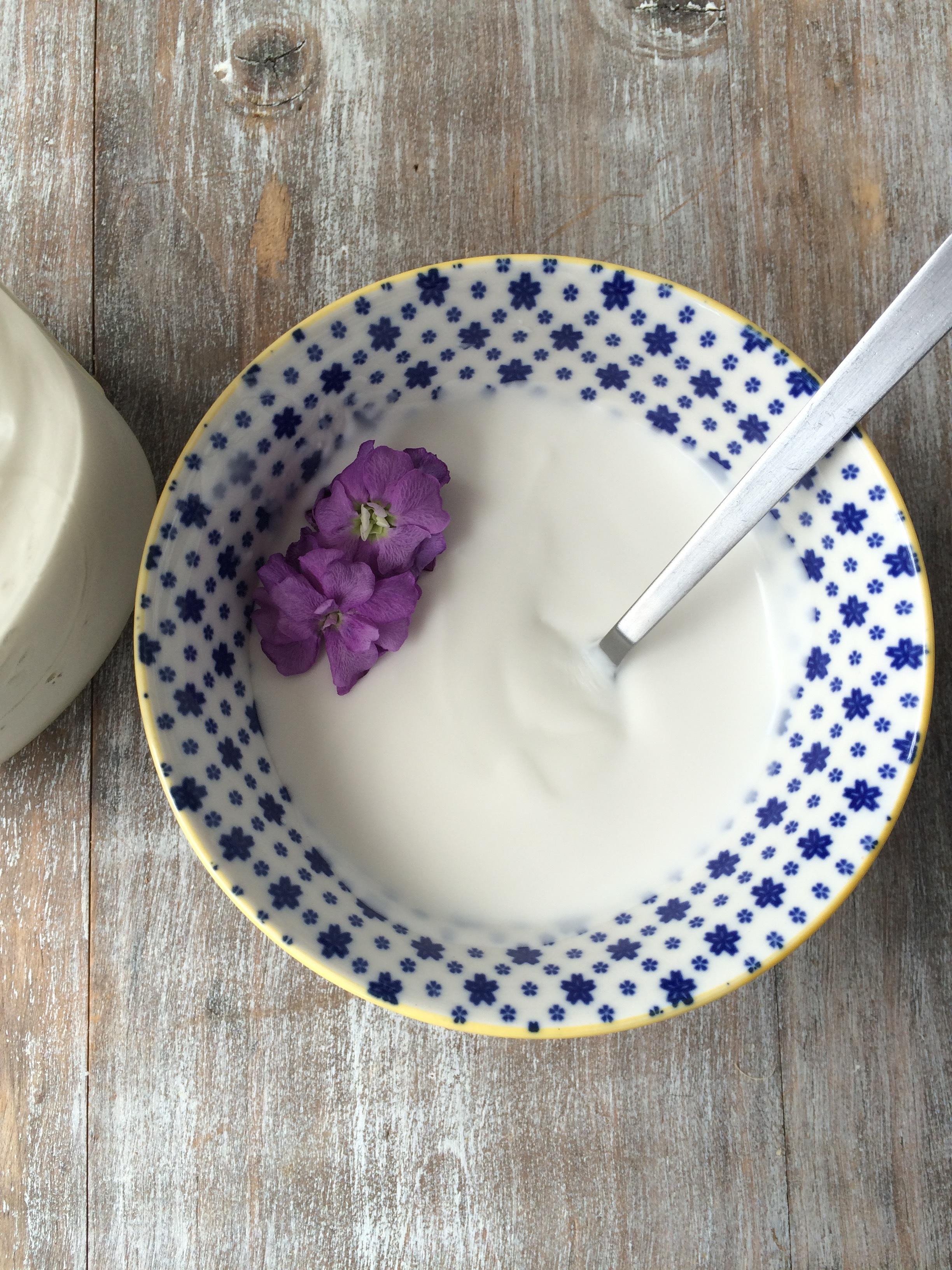 coconutyoghurt