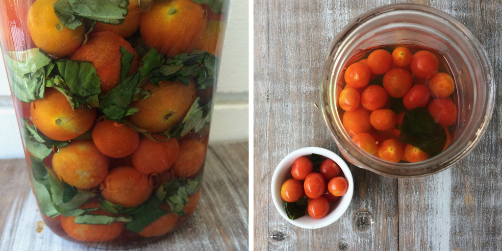 lacto fermented tomatoes