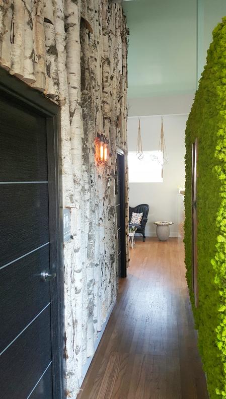 birch-moss-walls-sm.jpg