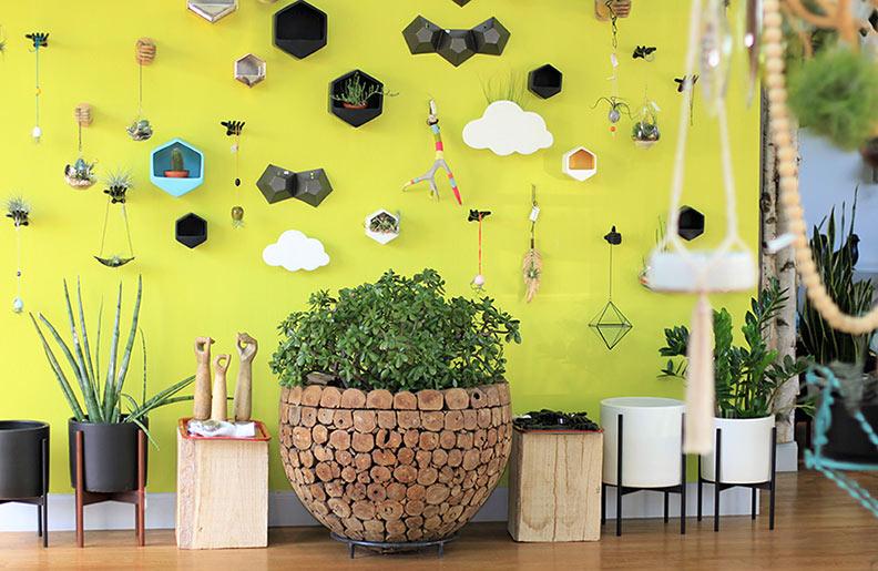 yellow-wall-with-jade-web.jpg
