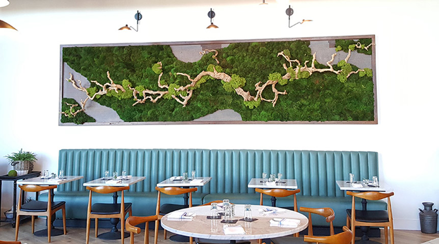 preserved moss wall at Stella Public House  |  2018