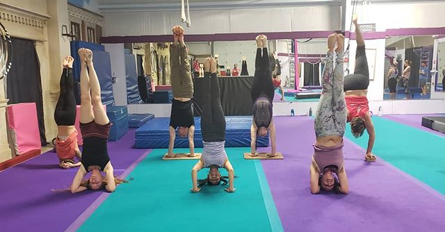 Don't forget! Every Thursday night, right before Acro, we have handstand class from 6:15 - 7:30. • • Build upper body strength, increase your overhead endurance, and balance your circus practice out with inversion training. Whether you've been practicing handstands for years or you're not quite sure where to start, this class is for you!