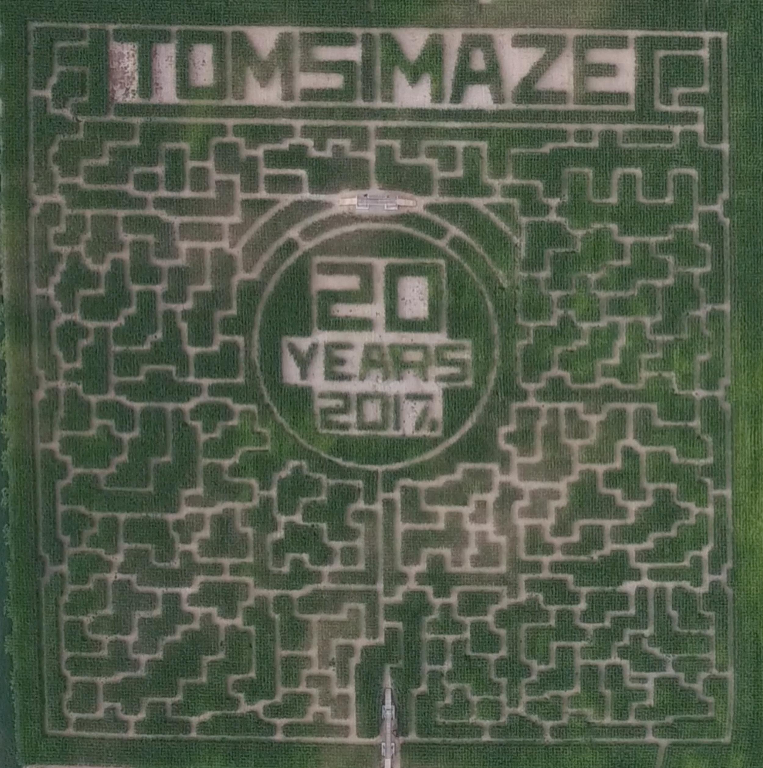 Tom's Maze.jpg