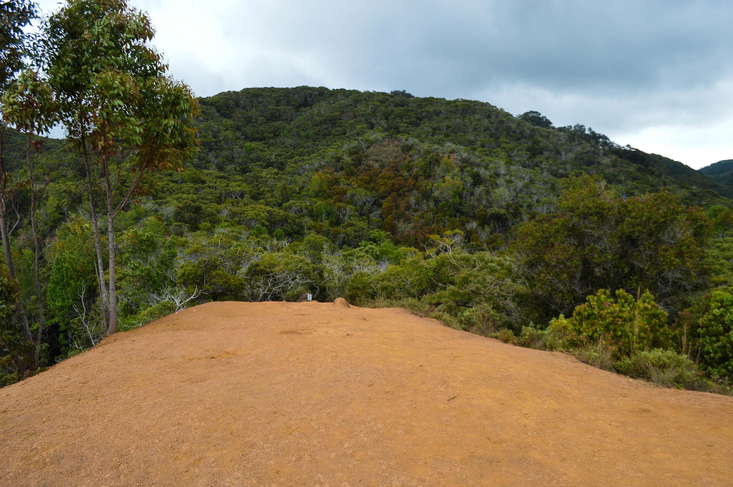 Waipoo Falls + SaltWaterVibes