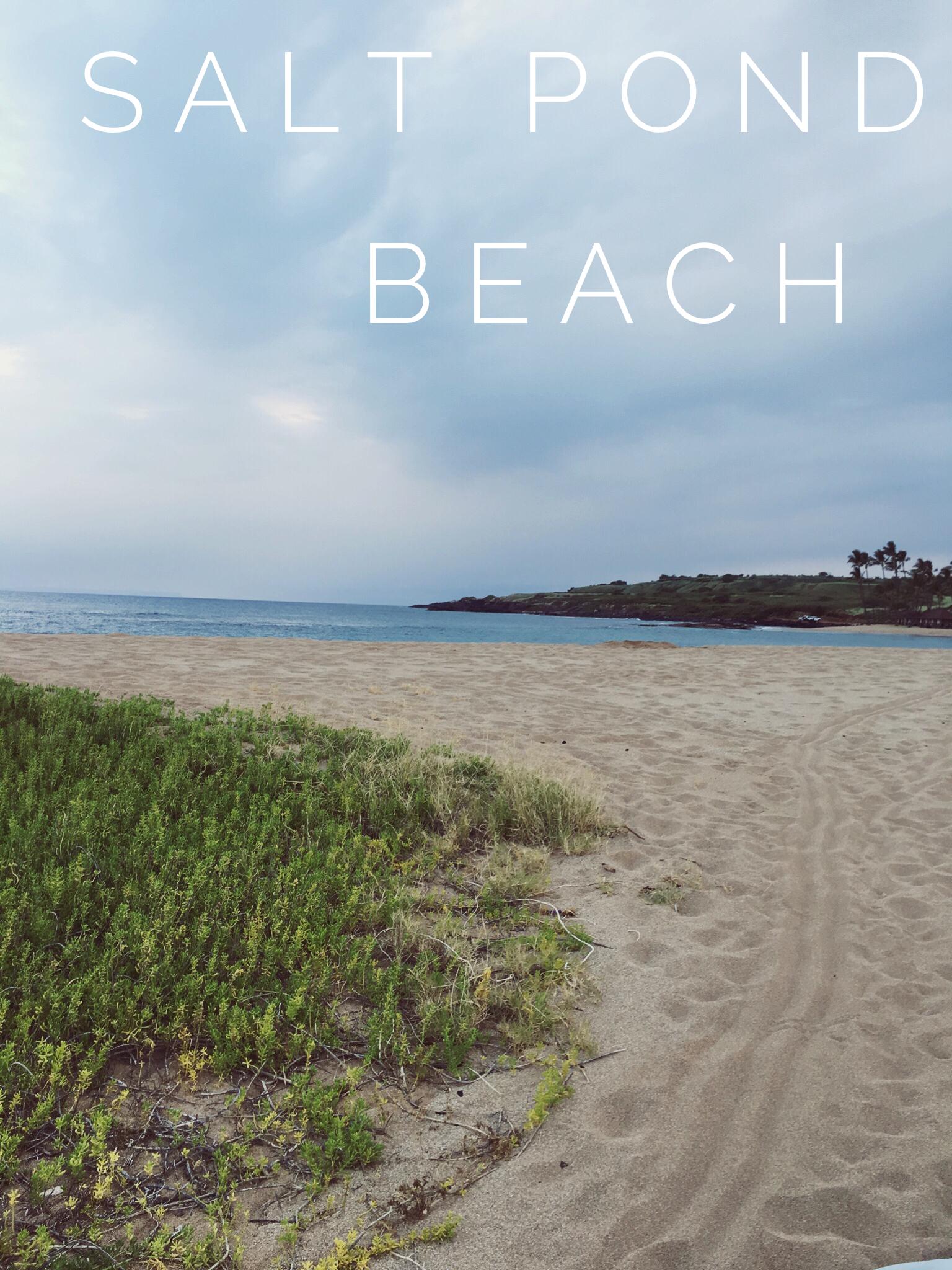 Salt Pond Beach + SaltWaterVibes