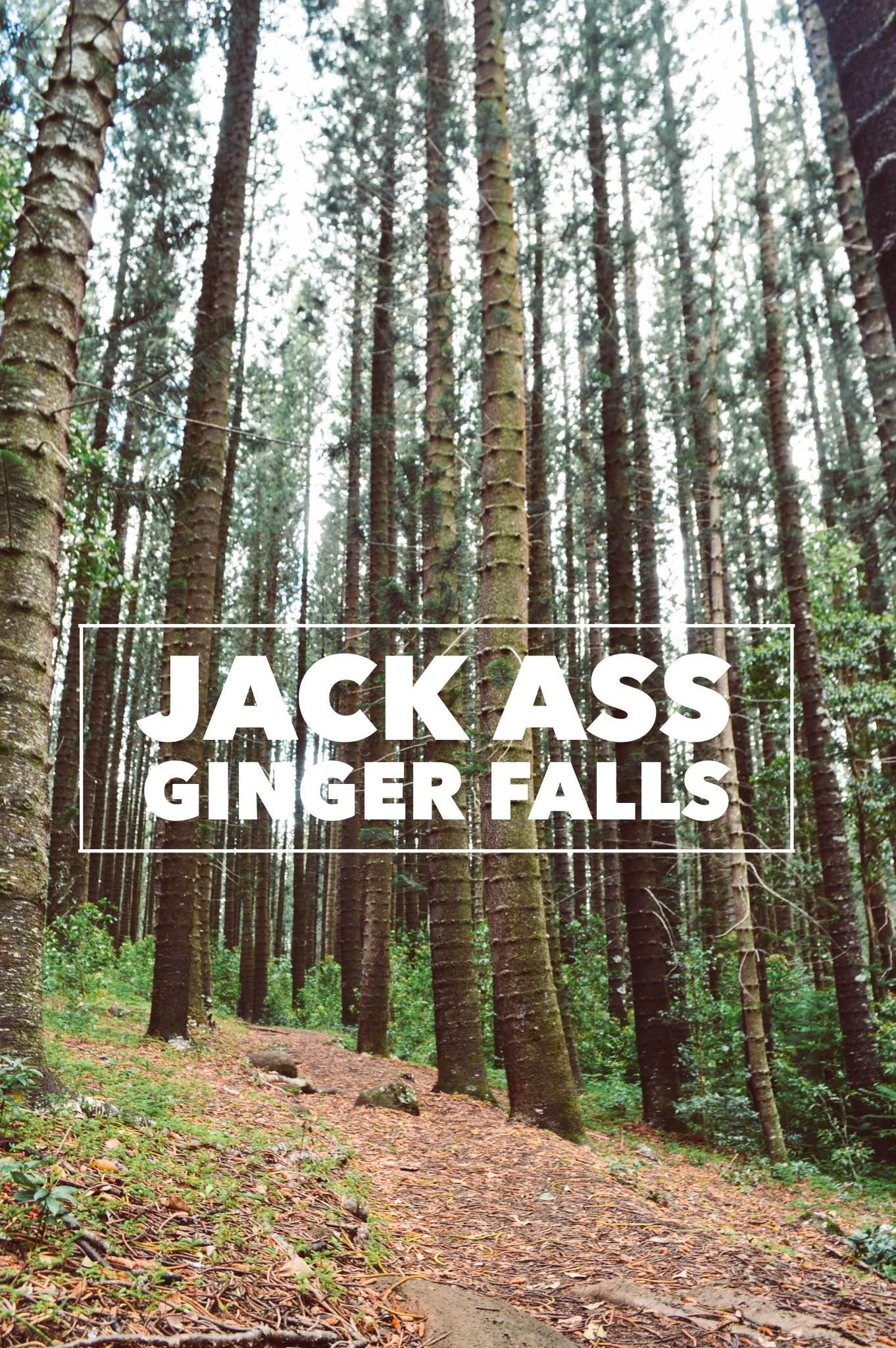 Jack Ass Ginger Falls + SaltWaterVibes