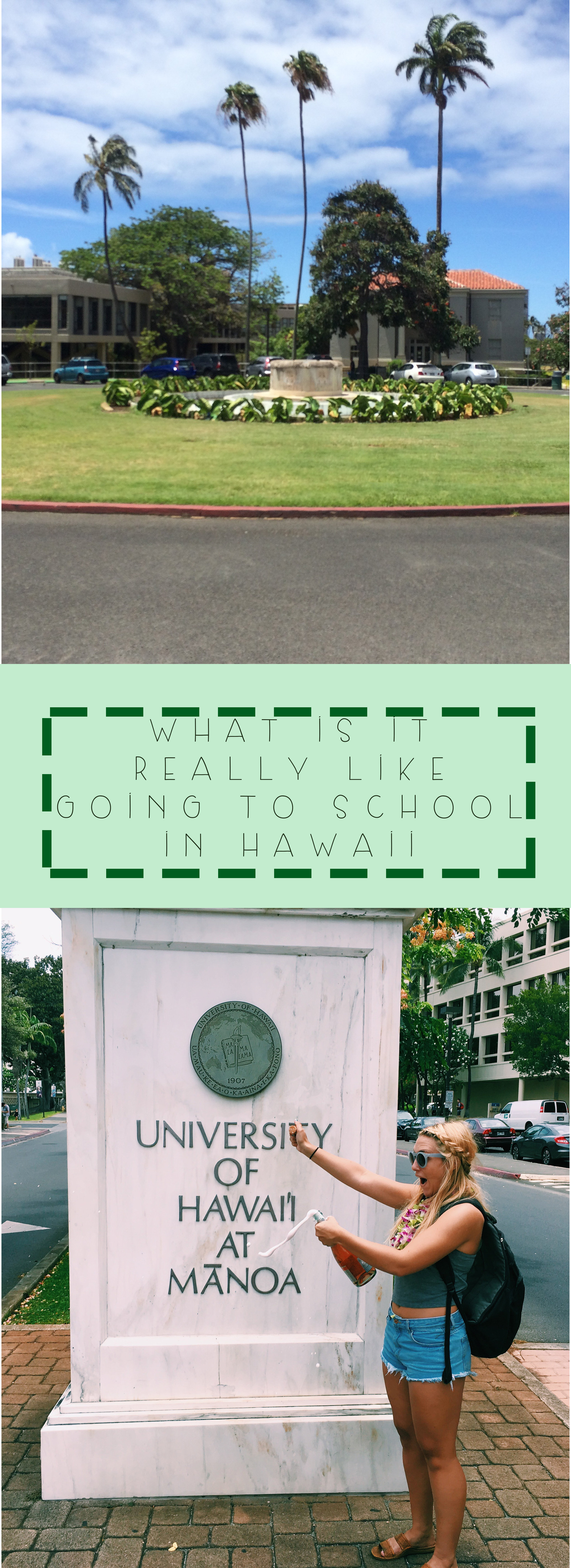 The University of Hawaii + SaltWaterVibes