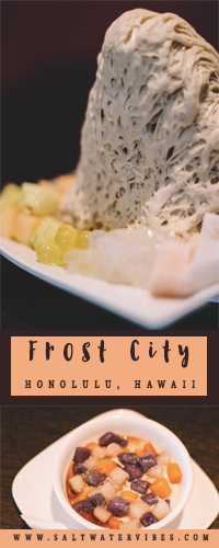 Frost City + SaltWaterVibes