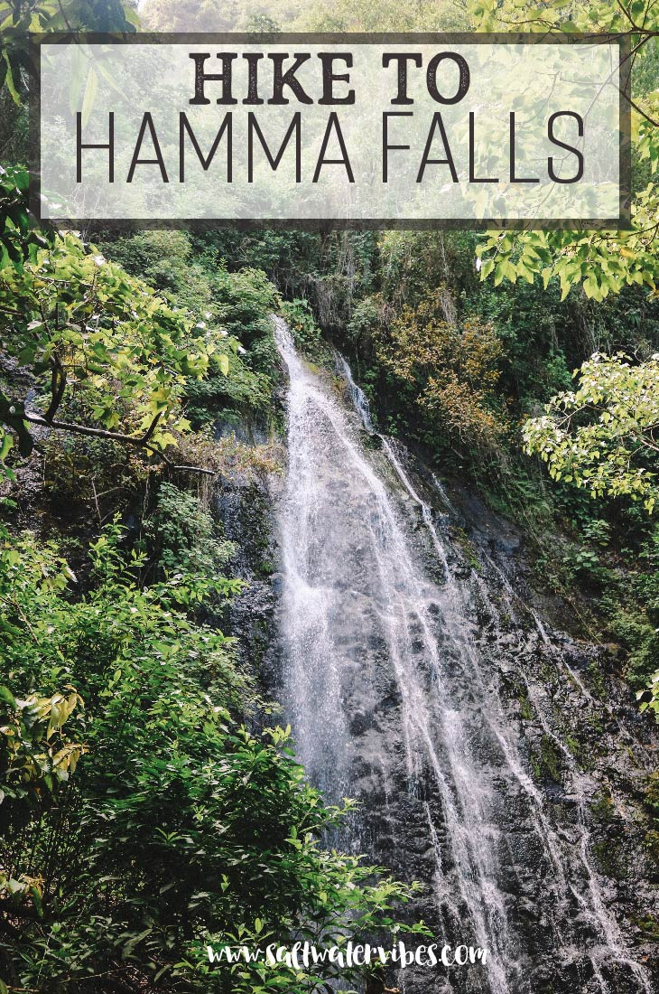Hike to Hamama Falls + SaltWaterVibes